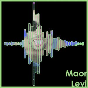 Maor Levi